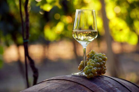 vino bianco romagna